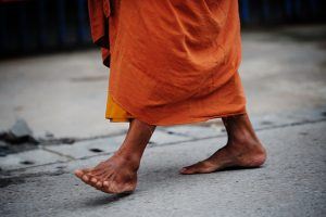 ClearLight Meditation Institute Monk-Walking-2-300x200 In the Footsteps of the Buddha