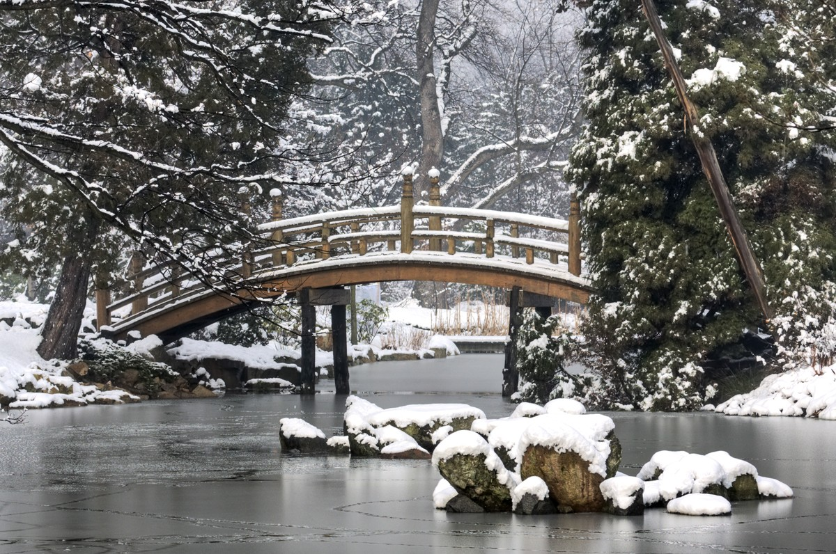 ClearLight Meditation Institute japanese-winter-bridge-2_1200x796 Home